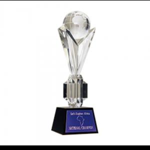 Trophy (Large)
